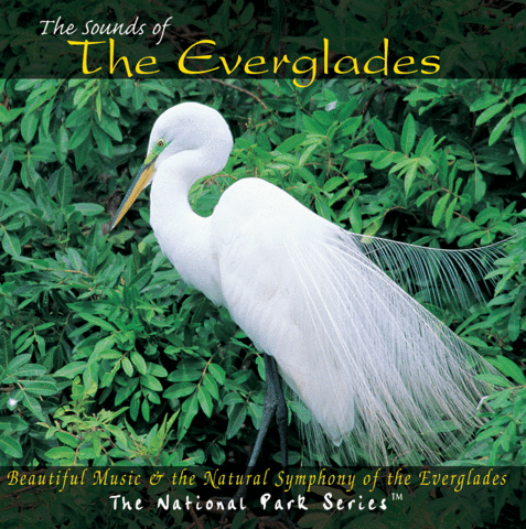 The Sounds of The Everglades